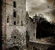 The Dark Tower - Ludlow Castle by mumblebug