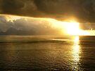 Golden Sunset by Lucinda Walter