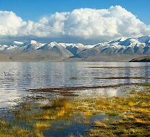 Lake Manasarovar and the tibetan Himalayas by Delfino