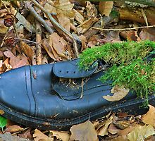 Moss Lining For Extra Comfort . by relayer51