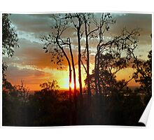 Sunset Through the Trees... Poster