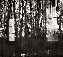 arc_windows by James Gehrt
