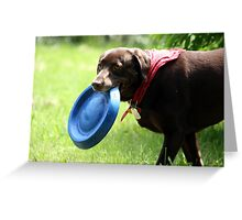 A good game of catch. Greeting Card