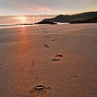 Footprints in the Sand by Smudgers Art