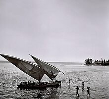 Dhows by Vincent Riedweg