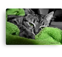 Greenie Canvas Print