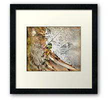 Fisherwoman 2 Framed Print