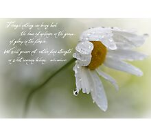Sympathy Card Photographic Print