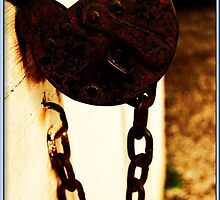 A Beautiful Old Lock by violetinthesnow