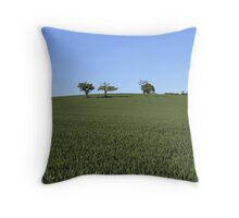 Two Tone Topography Throw Pillow