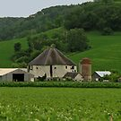 farm in dunn county, wisconsin by Lynne Prestebak