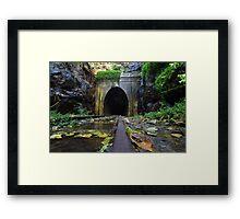 Along the rail Framed Print