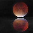 Super blood moon by Avril Harris