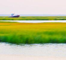 Sea Praries by jaeepathak