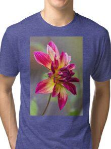 dahlia in garden Tri-blend T-Shirt