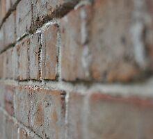 Wall by Anthea Bennett