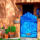 Albuquerque Door by Mitchell Tillison
