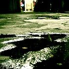 Puddle by withsun