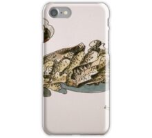 Sea things iPhone Case/Skin