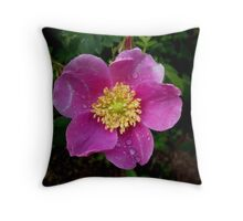 Wet and Wild Rose ... Throw Pillow