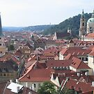 Prague rooftops by machka