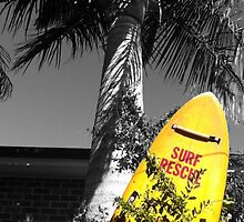 Surf rescue by Mandy Roberts