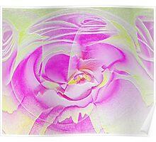 Frozen rose Poster