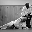 Aikido Yoshinkan by Shredman