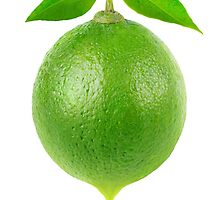 One lime with drop of juice by 6hands