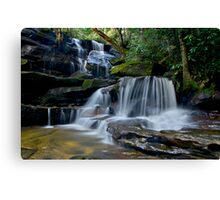 Cascading Somersby Falls Canvas Print