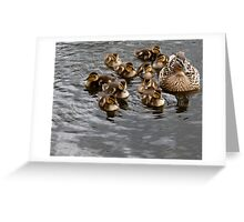 Alright Duck? Greeting Card