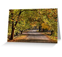 Autumn Leaves - Hill End, NSW Australia - The HDR Experience Greeting Card