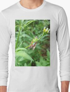 So, Bella, let me see your pretty underpinnings... Long Sleeve T-Shirt