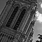 Notre Dame de Paris, France by EblePhilippe