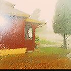 The Rain Series 2-1 - My Neighborhood by Lenore Senior