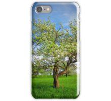 The Big Apple Tree iPhone Case/Skin