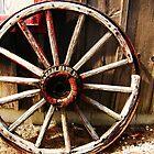 Wagon Wheel (Petrolia Discovery) by Graham Beatty
