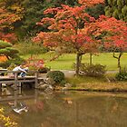 Seattle's Japanese Garden by Barb White