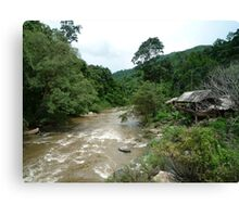 The Chiang Mai Jungle Canvas Print