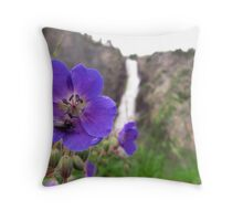 Waterfall fly Throw Pillow