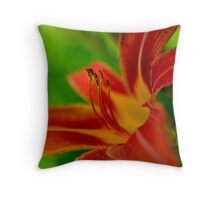 Red with Yellow Stripes Throw Pillow