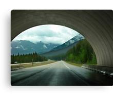Wildlife Overpass Canvas Print