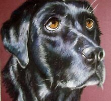 Black Lab by Sharon Herbert