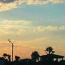 Georgia Sunset by Ryan Kleczka