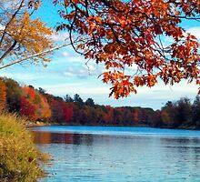 Autumn Overhang by bvcjh8489