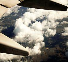 Wingman by Adrena87