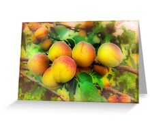 In the apricots kingdom Greeting Card