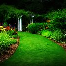 A Not So Secret Garden by Lea  Weikert