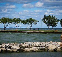 Sandusky Ohio - Shoreline Park by SRowe Art
