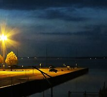 Jackson Street Pier At Night by SRowe Art